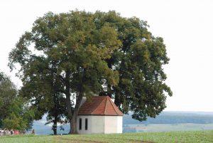 schnepfenkapelle-klein